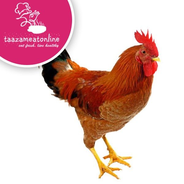taazameatonline-Country-Chicken-Curry-Cut-Pieces